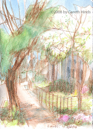neighborhood trees in summer, sketch by Gareth Hinds