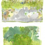 The sun was fierce so I sat in the shade of the house and painted a more limited vista. Love the bottom one.